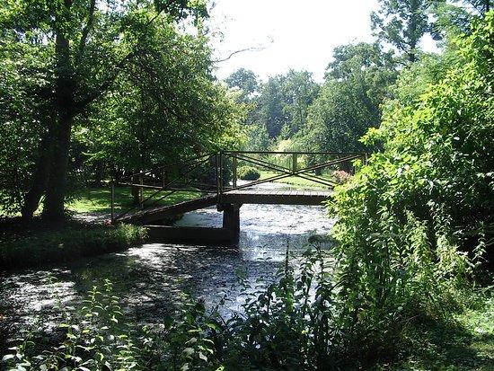Beautiful bridge on the private land next door