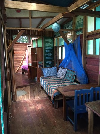 Up In The Hill: Silverback cabin, living area