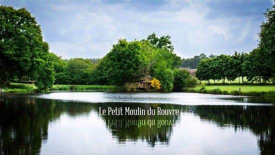 Saint-Pierre-de-Plesguen, Fransa: Le moulin
