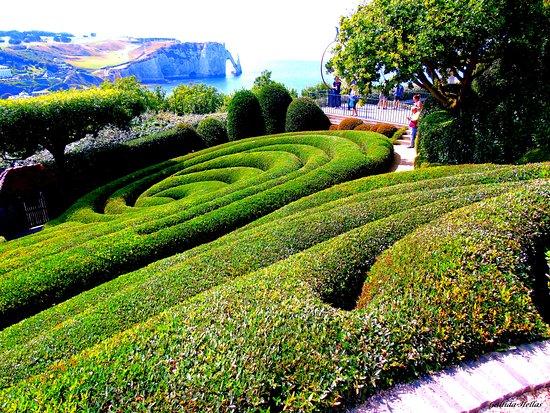 Admirer les falaises au milieu de la verdure