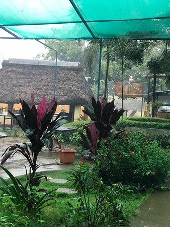 Lush Garden Restaurant