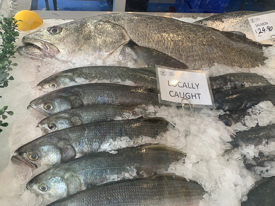 Get Shucked Fresh Seafood Market: Whole fish