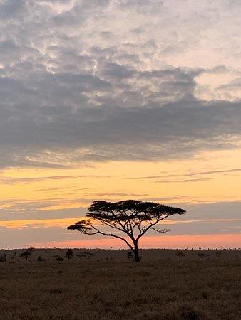 Alba nel Serengeti