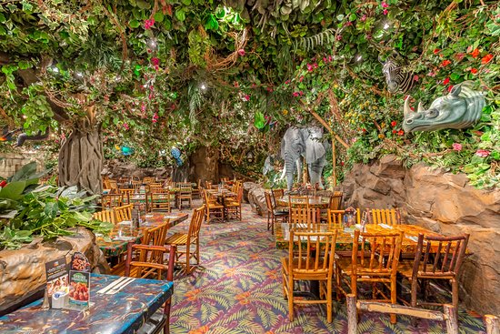 Located inside Rainforest Cafe Chicago.