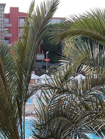 Τουρκικές ακτές της Μεσογείου, Τουρκία: Вид с комнаты 4209,в этом корпусе все нечетные номера смотрят на бассейны, во внутренний дворик