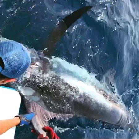 Это была супер Рыбалка!