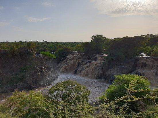 Yama Ethiopia Tours (Addis Ababa) - Updated 2019 - All You
