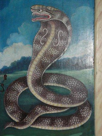 Cartoline da Tangalle, Sri Lanka