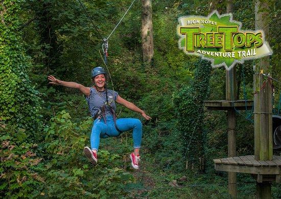 Tree Tops Trail