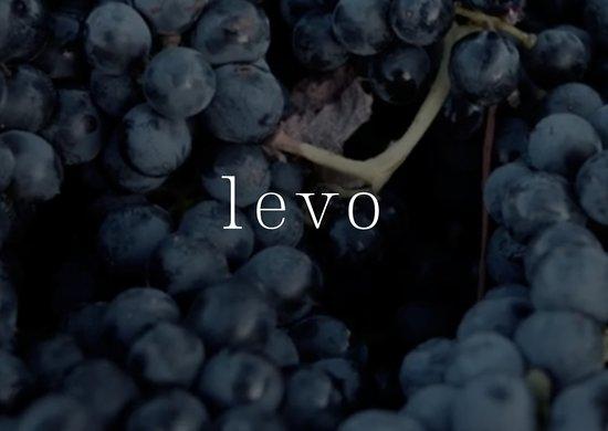 Levo Wine