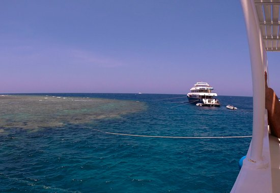 Colona Divers Marsa Alam: Moored up ready to dive