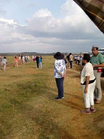 Národní park Serengeti, Tanzanie: Exploring the majestic wildlife and raw wilderness Group tours 2019/2020