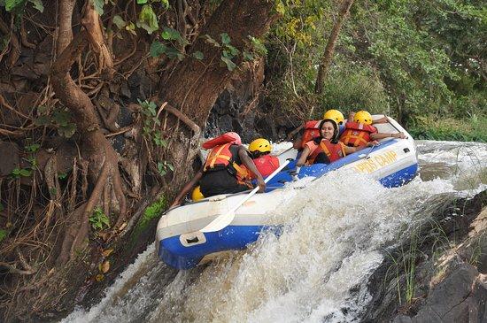 Adrenaline Experience