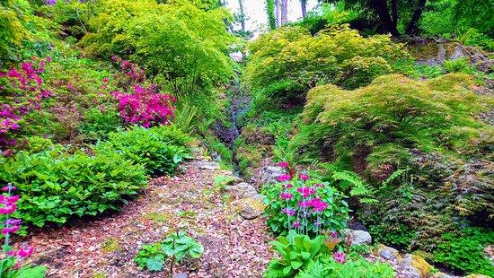 Plas Cadnant Hidden Gardens: Isn't it pretty?