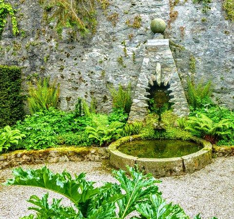 Plas Cadnant Hidden Gardens: Wishing well