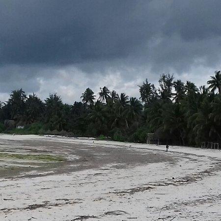 Pongwe Beach. ..In questo periodo ci sono parecchie alghe . .. Decisamente meglio con l'alta marea