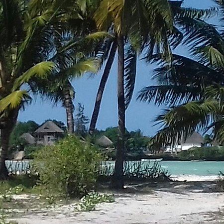 Il The Island di Pongwe è un esclusivo Resort molto piccolo costruito su una roccia naturale corallina che si trova in mezzo al mare a breve distanza da Pongwe Beach. ..