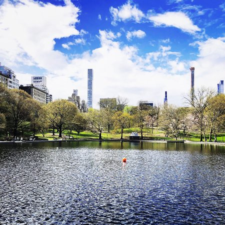 Central Park (New York City) - UPDATED 2019 - All You Need