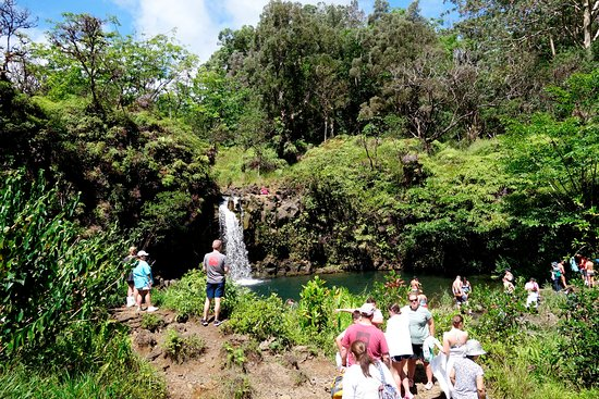 we always stop at safe waterfalls and let you dip in the water during Famous Road to Hana, Tropical Rainforest, Waterfalls, Beaches & Lunch