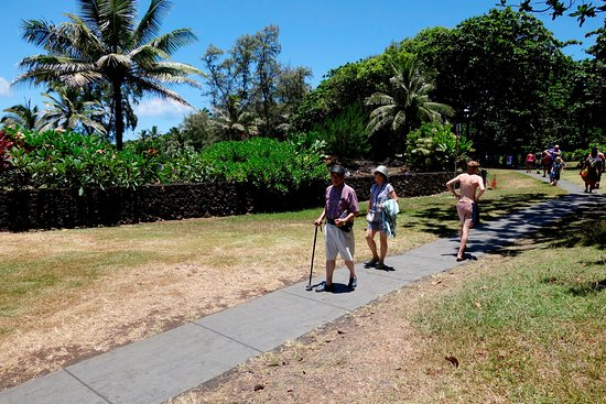 we're making our tours comfortable for elderly people, especially the Famous Road to Hana, Tropical Rainforest, Waterfalls, Beaches & Lunch