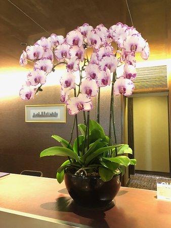 フロントのお花が綺麗でした。