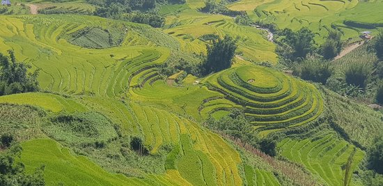 Sapa tour in August with Vivutravel