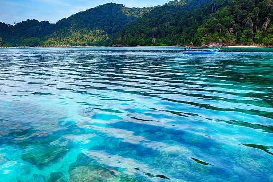 Richelieu Diving 的照片 - 斯米蘭島照片 - Tripadvisor