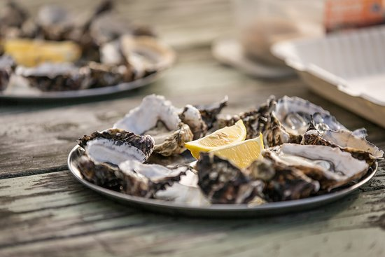 Oysters with Bruny Island Safaris