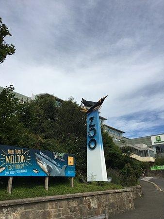 Edinburgh Zoo  Average zoo