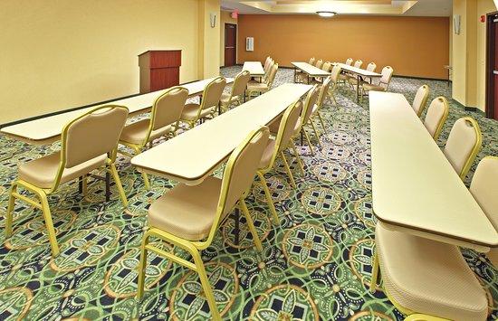 Holiday Inn & Suites Rogers - Pinnacle Hills: Meeting room