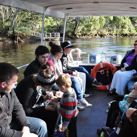 Great family day out on the Leven River Cruises, Ulverstone, Tasmania.  Leven River has many beautiful birds and native trees to view
