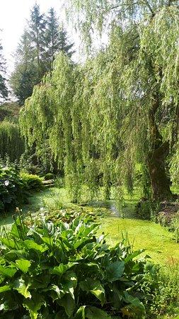 Carrigans, Ireland: Dunmore gardens