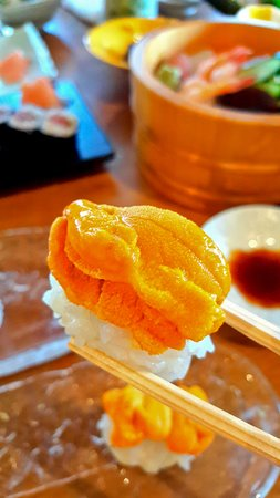 單點北海道鹽味赤海膽