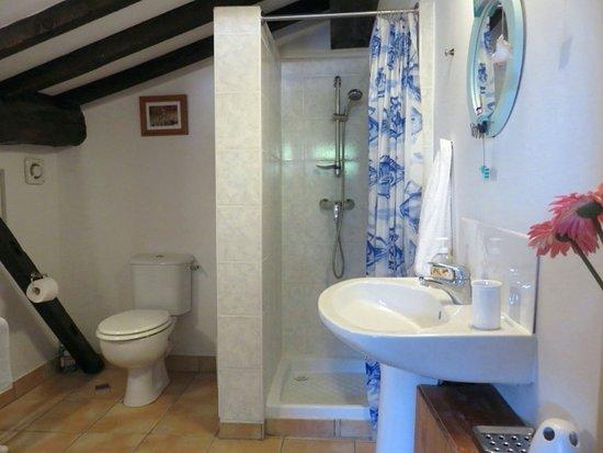 Belveze-du-Razes, France : Soujeole shower room