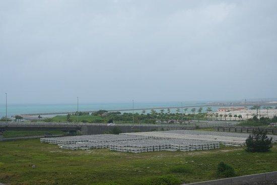 中央奥の方に人口のビーチが見えました。 橋から撮影。