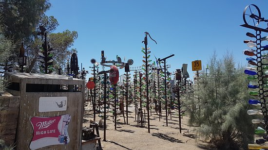 the bottle tree ranch
