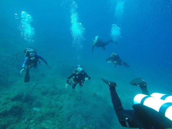 Full Dive照片