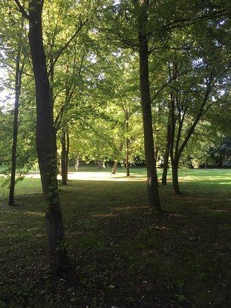 Sainte-Croix-Grand-Tonne, Frankrike: Domaine de la cour des lys