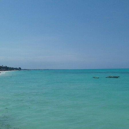 Panorama sul mare  di jambiani al Coral rock italian restaurant!  Top 👍