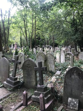 GRaves as far as the eye can see!