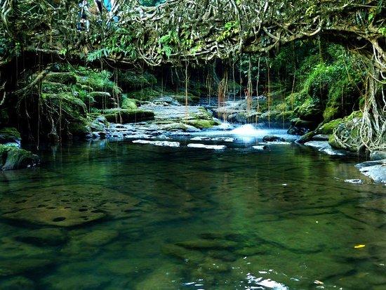 Meghalaya, الهند: Nature