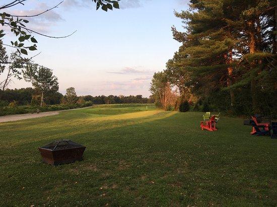 Hatfield, MA: A beautiful summer down at Black Birch