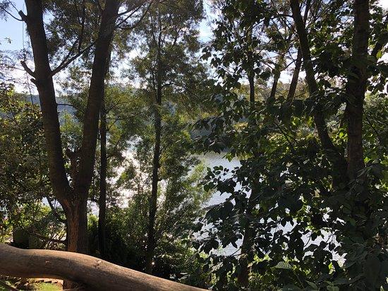 Bunyonyi Overland Resort: View from the cabin