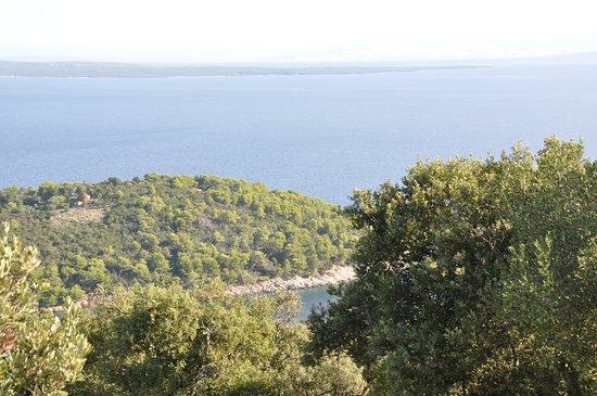 Vista sull'isola e su Lussin Grande