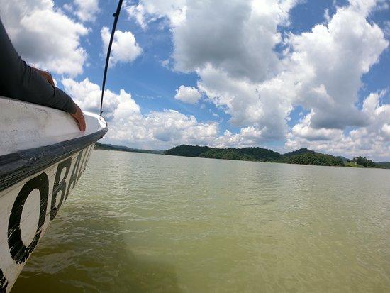 Gamboa Rainforest Resort Chagres River Boat Tour: Tour Rio Chagres y Lago Gatún