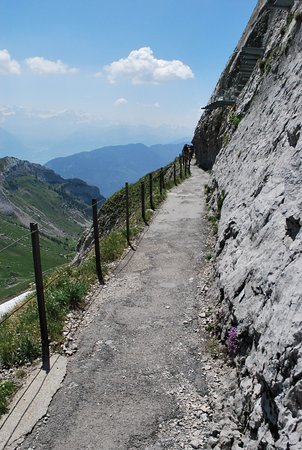 Mount Pilatus Summer Day Trip from Lucerne: mountainside hike