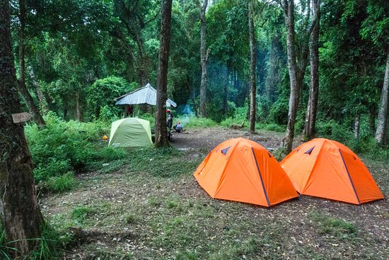 Tambora Guesthouse: Camping on position 3