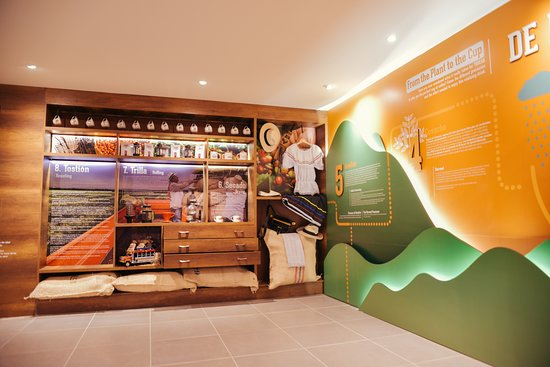 Discover the world of Colombian coffee at Toucan Coffee Museum.