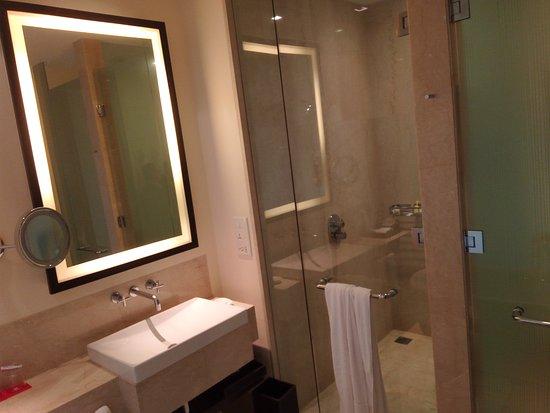 Basin + Shower area