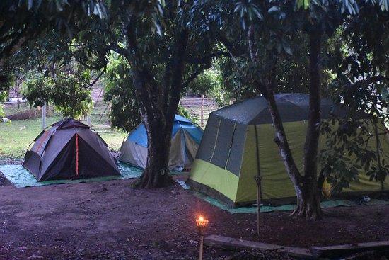 Siĕm Réabin maakunta, Kambodža: camping at kulen
